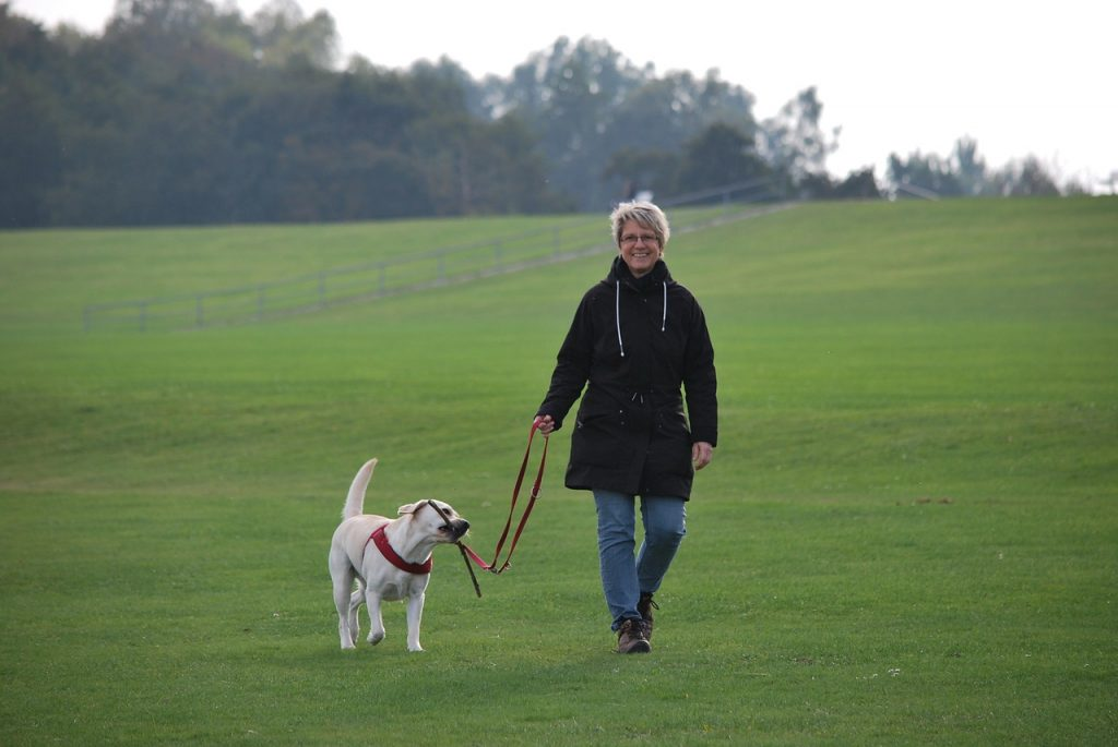 Raleigh pet sitters